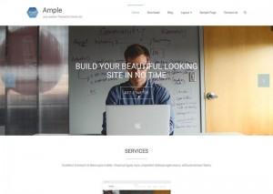 Ample : Eine Responsive WordPress Internetseite erhalten Sie bei uns bereits ab 1400 €