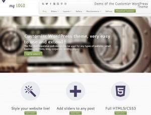 Customizr : Eine Responsive WordPress Internetseite erhalten Sie bei uns bereits ab 1400 €