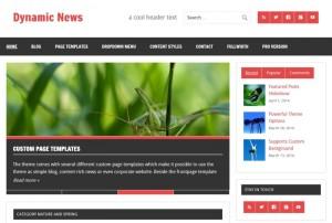 Dynamic-News : Eine Responsive WordPress Internetseite erhalten Sie bei uns bereits ab 1400 €