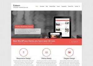 Esteem : Eine Responsive WordPress Internetseite erhalten Sie bei uns bereits ab 1400 €