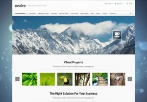 EvoLve : Eine Responsive WordPress Internetseite erhalten Sie bei uns bereits ab 1400 €