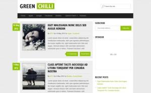 GreenChilli : Eine Responsive WordPress Internetseite erhalten Sie bei uns bereits ab 1400 €