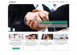 Hathor : Eine Responsive WordPress Internetseite erhalten Sie bei uns bereits ab 1400 €