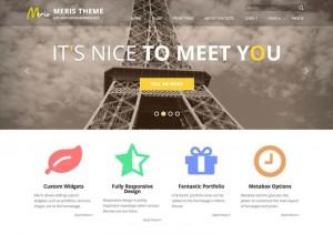 MERIS : Eine Responsive WordPress Internetseite erhalten Sie bei uns bereits ab 1400 €