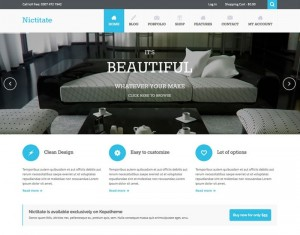 Nictitate : Eine Responsive WordPress Internetseite erhalten Sie bei uns bereits ab 1400 €