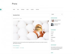 Prana : Eine Responsive WordPress Internetseite erhalten Sie bei uns bereits ab 1400 €