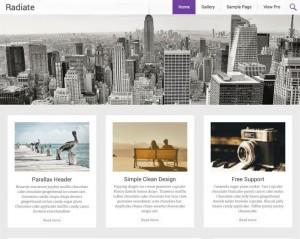 Radiate : Eine Responsive WordPress Internetseite erhalten Sie bei uns bereits ab 1400 €
