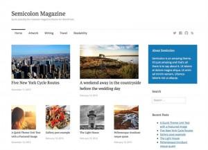 Semicolon : Eine Responsive WordPress Internetseite erhalten Sie bei uns bereits ab 1400 €