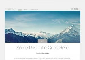 Serene : Eine Responsive WordPress Internetseite erhalten Sie bei uns bereits ab 1400 €