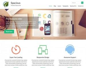 Spacious : Eine Responsive WordPress Internetseite erhalten Sie bei uns bereits ab 1400 €