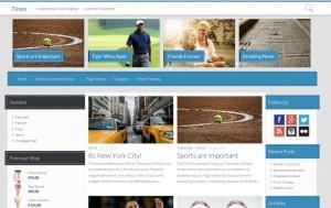 Times : Eine Responsive WordPress Internetseite erhalten Sie bei uns bereits ab 1400 €
