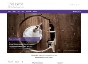 Unite : Eine Responsive WordPress Internetseite erhalten Sie bei uns bereits ab 1400 €